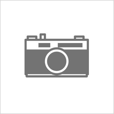 argentique, appareil photo